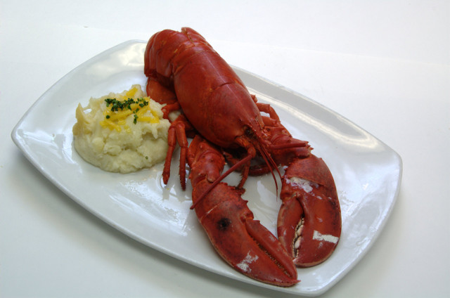 Microwave Steamed Whole Lobster