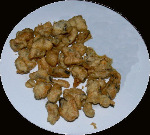 Fried Mussels